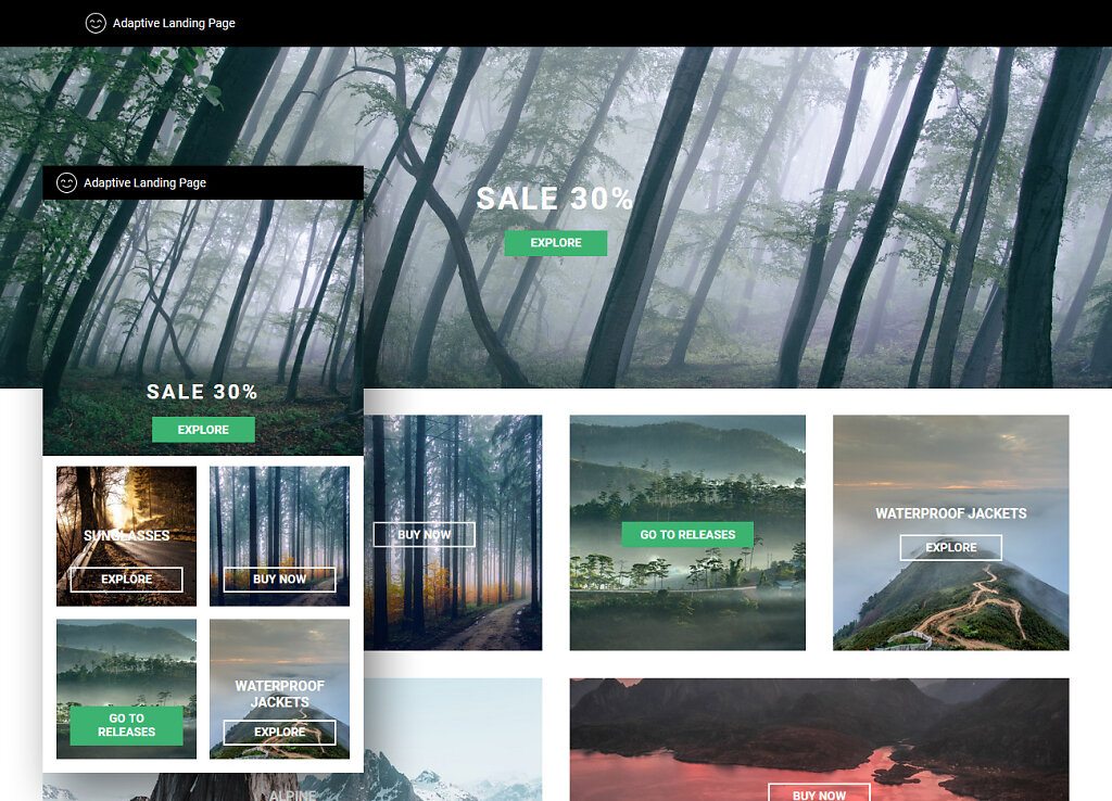 Adaptive Landing Page: Responsive coding according to design layout.